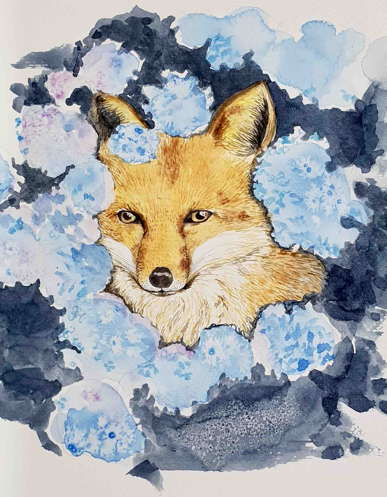 Illustration of fox in blue surrounds
