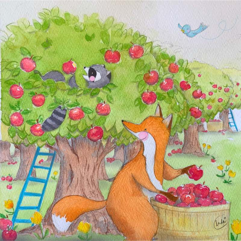 Illstration of fox and raccoon picking apples